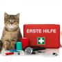Ветеринарные препараты широкого спектра действия для кошек и собак