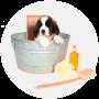 Средства гигиены для собак